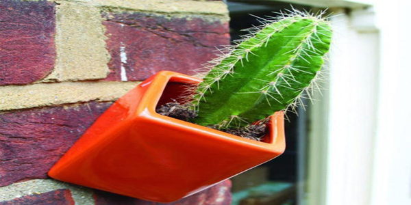 off-the-wall-planter-uniknya-pot-miring