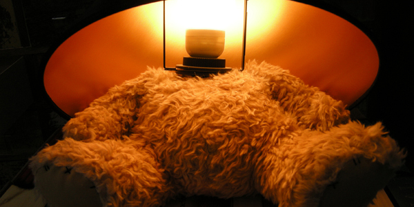 teddy-bear-lamp-dari-suck-uk